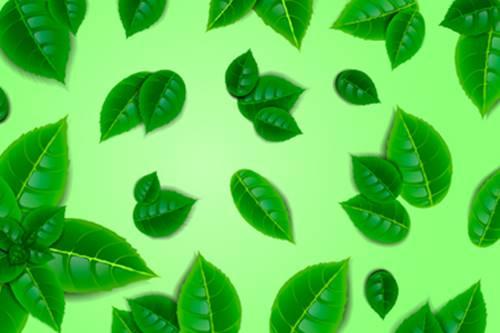 göz altı morluklarını azaltmak için nane yaprağı ve patates maskesi