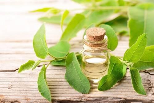 saç dipleri neden acır çay ağacı yağı iyi gelir mi
